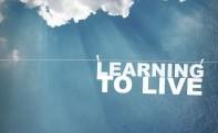 14 Bài học